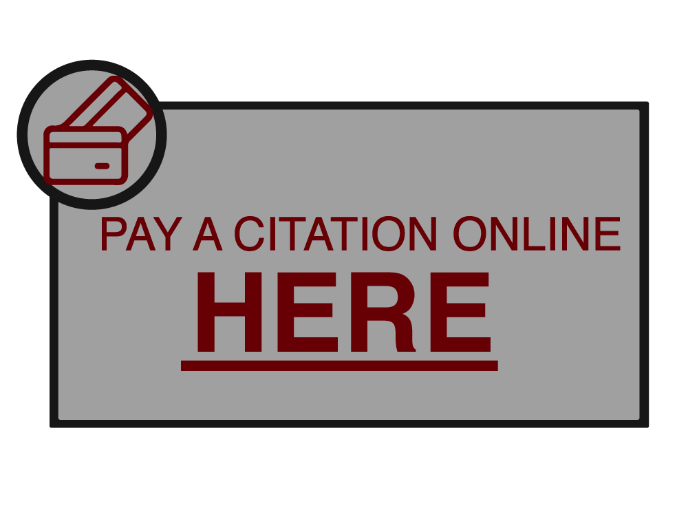 PAY-CITATION-ICON