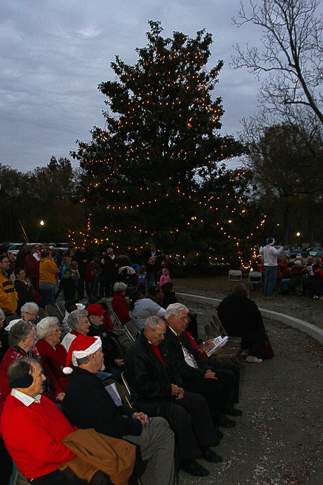 BW Christmas tree lighting