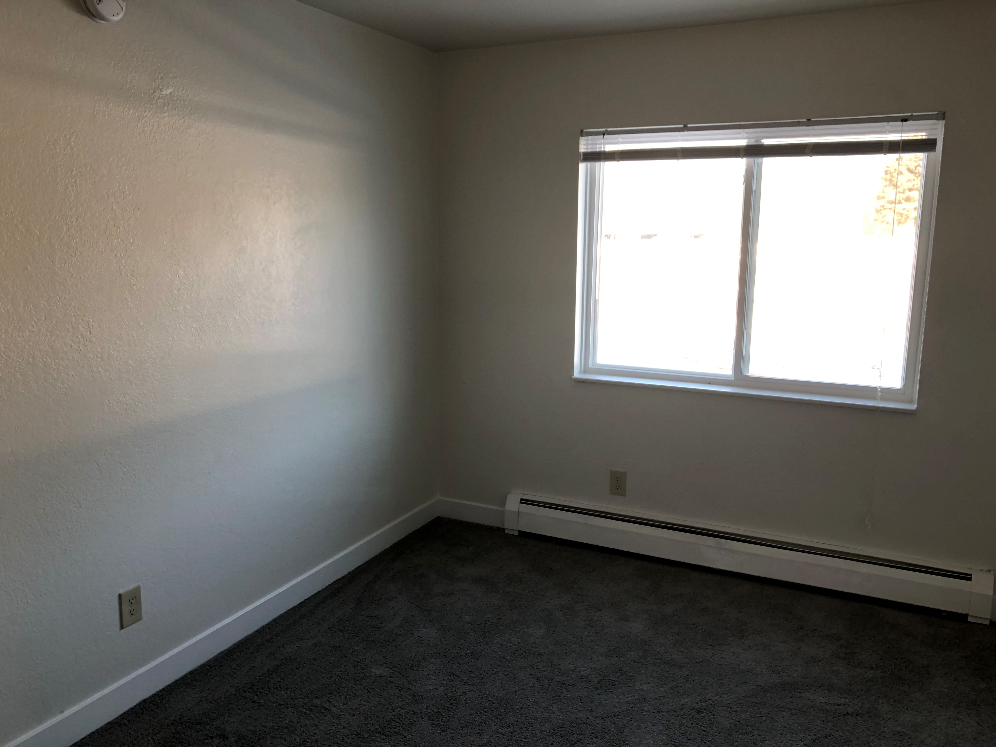 2 BR large bedroom