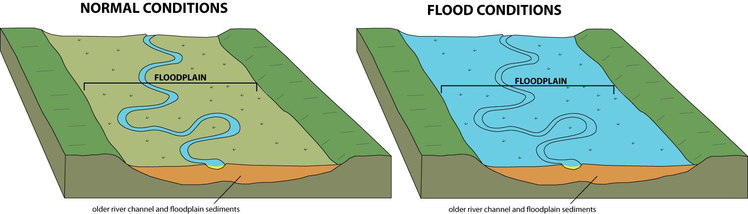Flood Plain A flood plain is an area of low lying ground adjacent ...