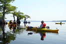 Image of person in Kayak