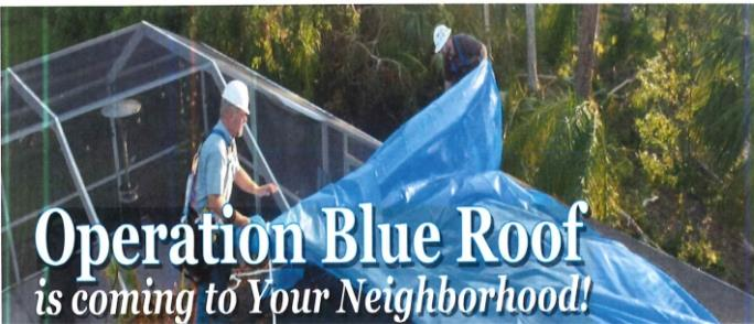 OPERATION BLUE ROOF