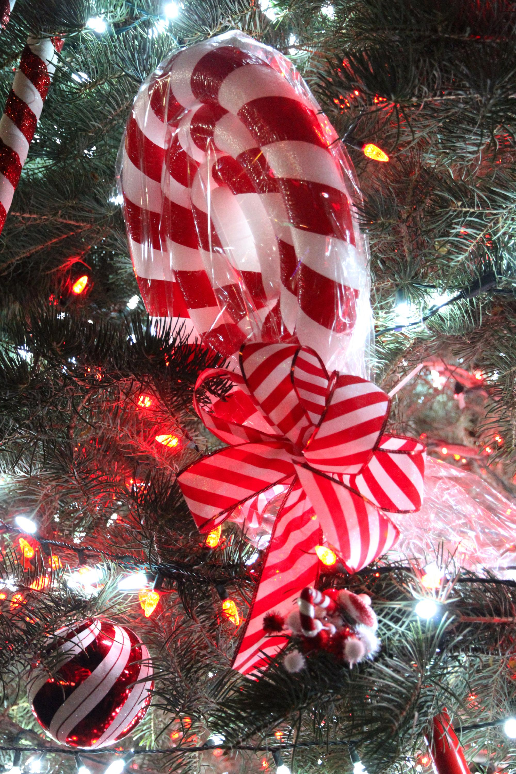 november 16th tree lighting and wyandotte third friday 6 pm start time visitors are welcomed to the tree lighting at the intersection of sycamore and - Candy Christmas Divorce