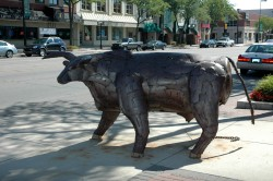 Pic-Sculpture-MerrillLynchBull